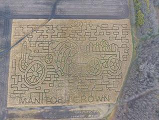 Big Als Corn Maze